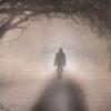 Nebbia, metafora di disequilibrio